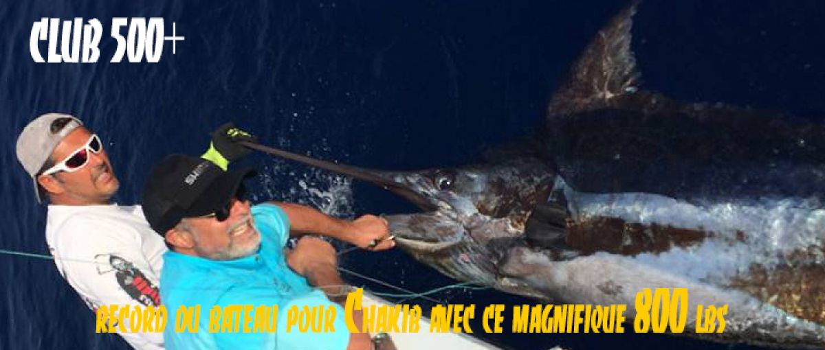https://www.xiphias-biggamefishing.fr/index.php?page=peche-au-gros-marlin-bleu-marlin-blanc&id=1110