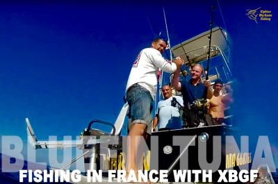 Bluefin tuna fishing south of france