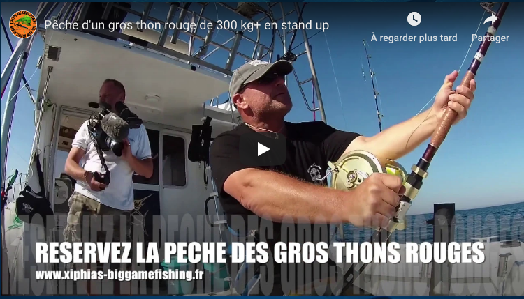 video peche au gros